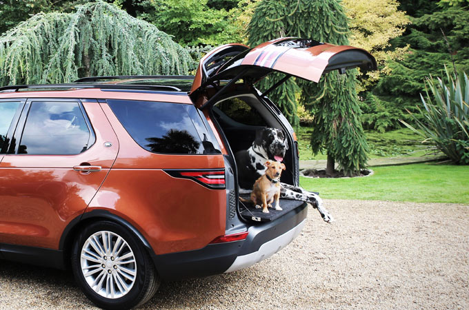 The Rear Height Adjust feature helps dogs of all sizes into the car.