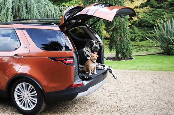 Land Rover Pets: A Dogs Best Friend